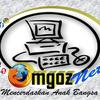 omgozNet_Store