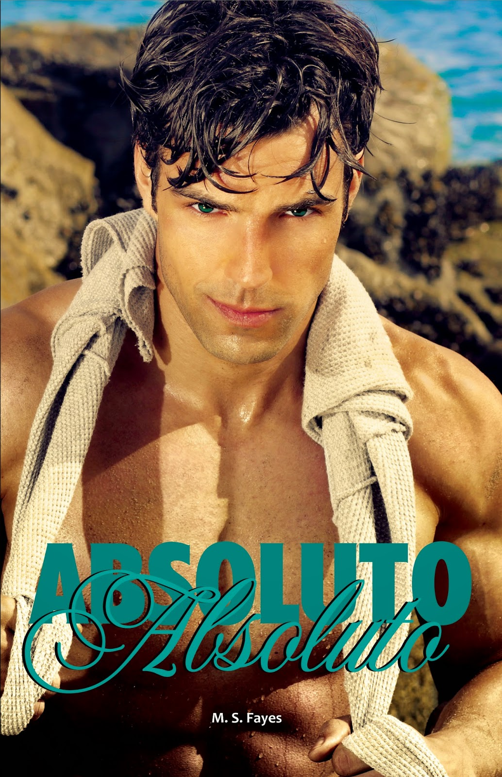 [Resenha] Absoluto - M.S.Fayes