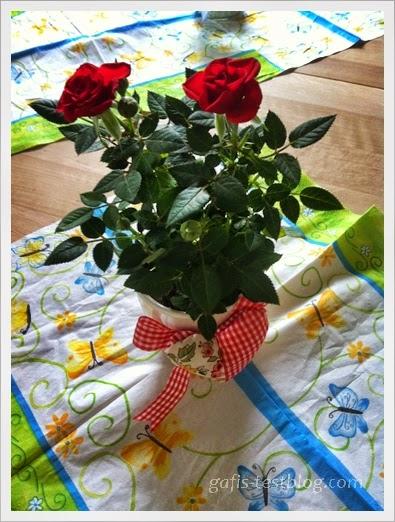 Rosenstöckchen zum Muttertag