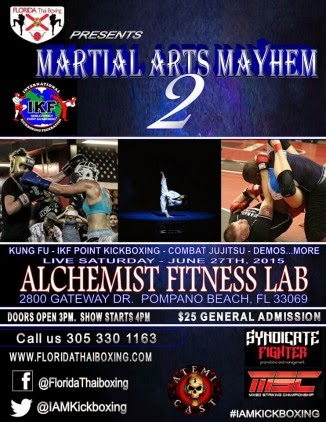 Martial Arts Mayhem 2