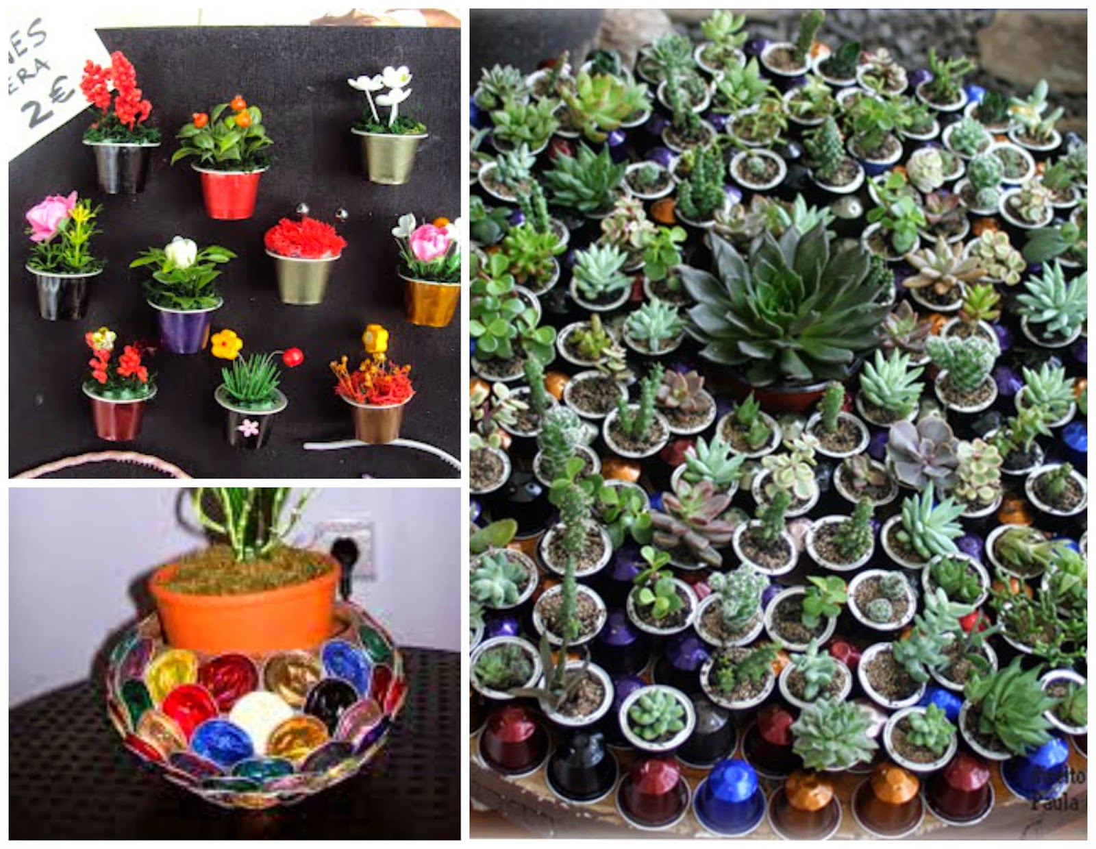 Artesanato com Cápsulas de café | Dá pra fazer jardinagem