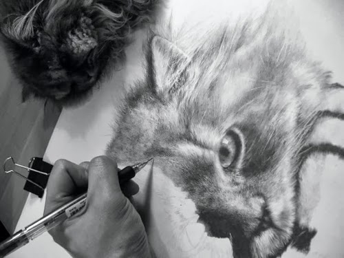11-Hyper-realistic-Cats-Pencil-Drawings-Hong-Kong-Artist-Paul-Lung-aka-paullung-www-designstack-co