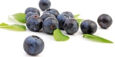 Recettes Fruits-Crumble aux myrtilles