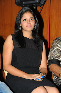 Anjali Stills At Journey Movie Audio Launch CF 02