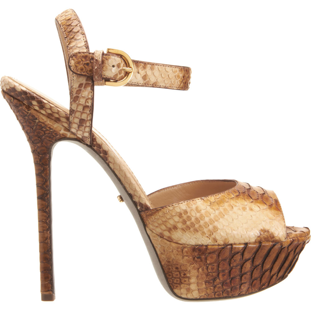 python platform sandal sergio rossi all about shoes accessories. Black Bedroom Furniture Sets. Home Design Ideas