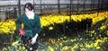 nha vuon trong hoa o da lat