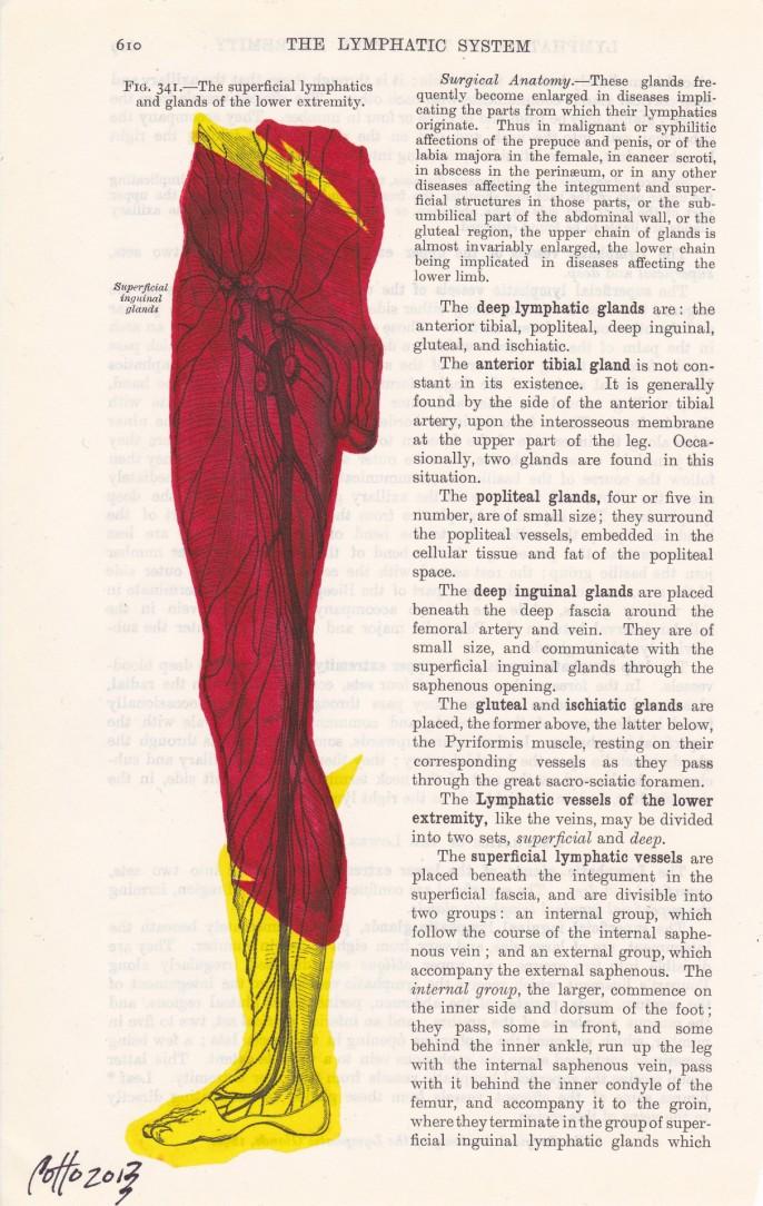 Julio Cotto: Anatomia de un Frikardo | LasMilVidas