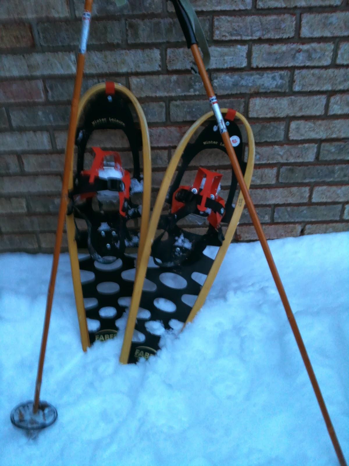 snowshoes, ski poles