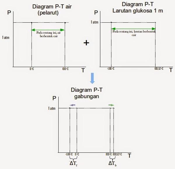 Bagaimana cara membaca diagram fasa mudah memahami kimia begitu pula titik didihnya akan menjadi 10052 oc pada tekanan ini pada nilai tekanan yang lain polanya akan sama titik beku berkurang sebesar 186 oc ccuart Images