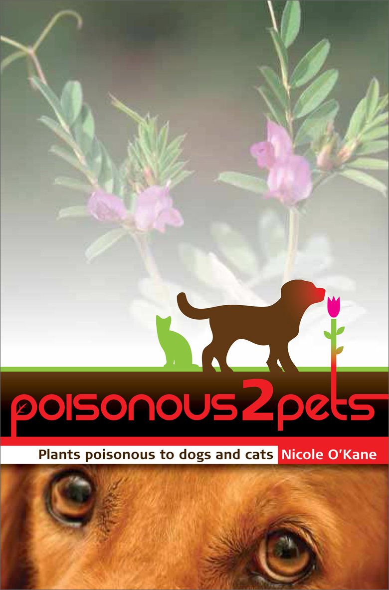 common plants toxic to your dog australian dog lover. Black Bedroom Furniture Sets. Home Design Ideas