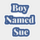 Boyleing Points  - Boy Named Sue
