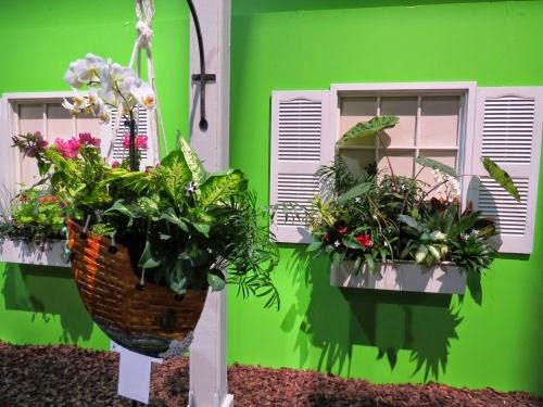 Philadelphia Flower Show 2015 Window Box and Lamp Post: Johnny Depp