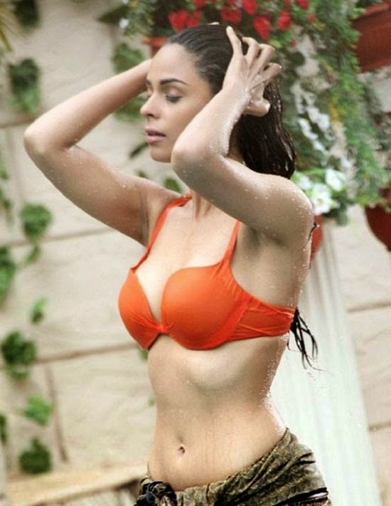 Mallika Sherawat Bathing Photos, Mallika Sherawat bathing scene, Mallika Sherawat bra images, Mallika Sherawat Wet Wallpaper