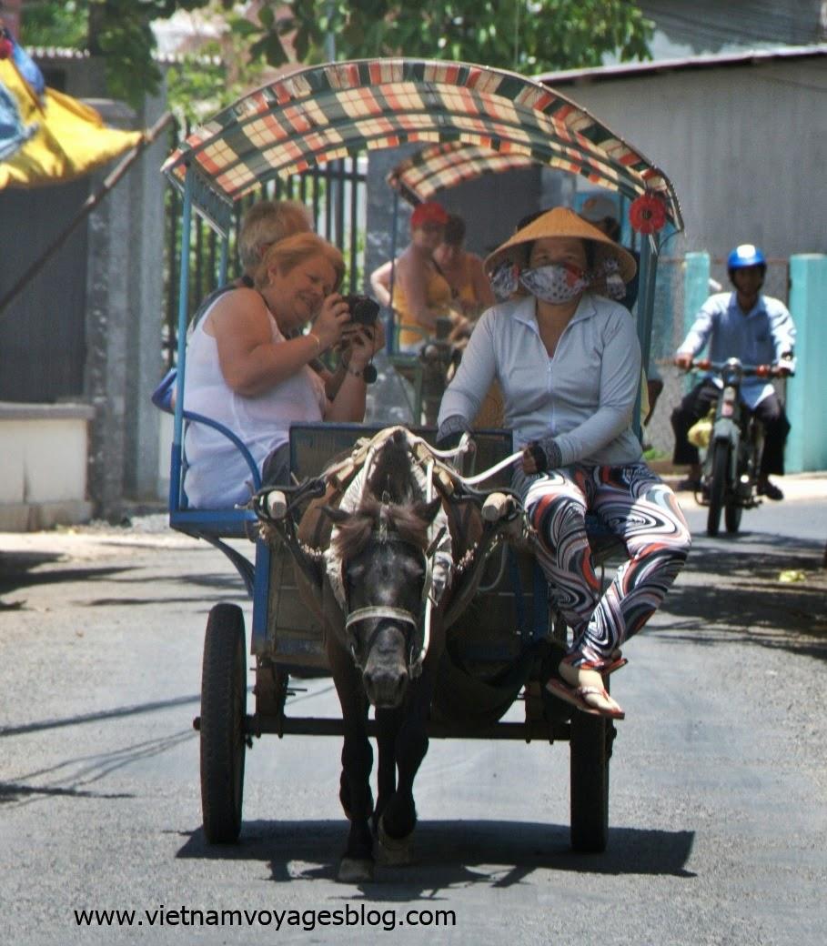 Khám phá tour đi xe ngựa ở Mỹ Tho - 2014