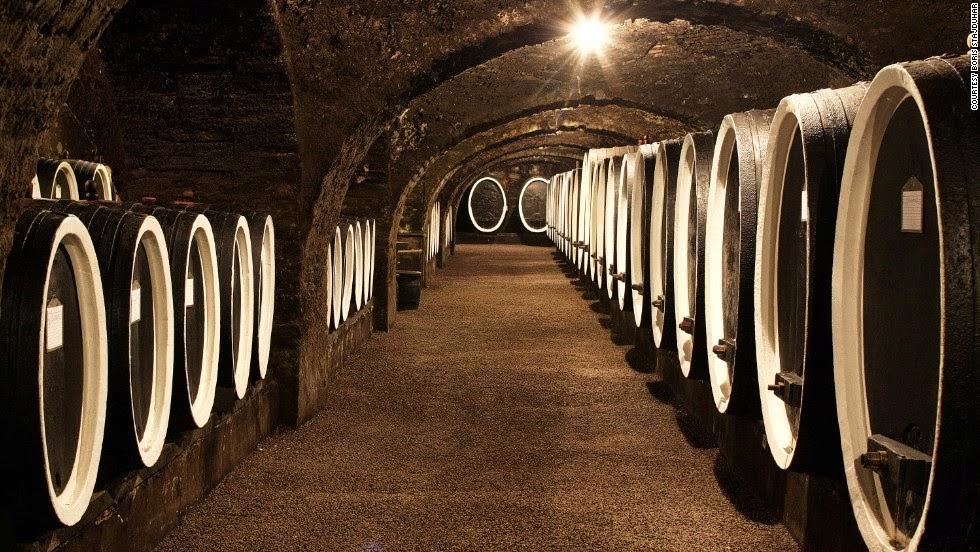 Wine cellars, Kutjevo
