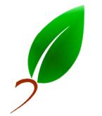 Software Desain Grafis terbaru dengan Plugin Design yang handal dan Applikasi desain grafis yang gratis anda download.