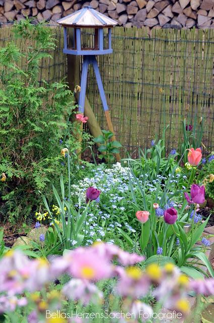 bunter Garten im Frühling
