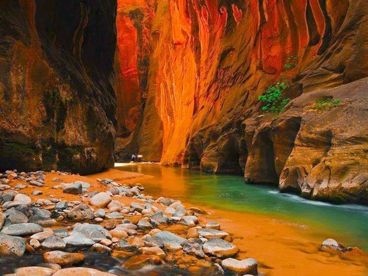 water, river, utah, canyon