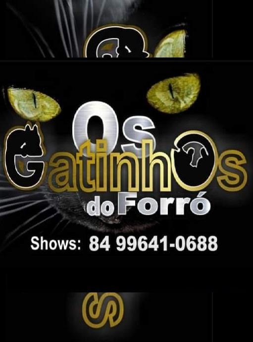OS GATINHOS DO FORRO.