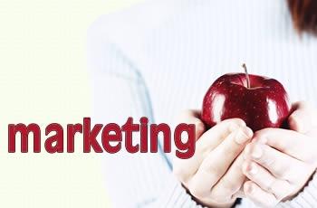 Nghệ thuật marketing