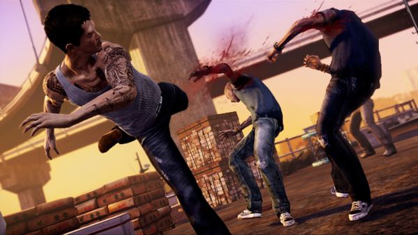 Sleeping Dogs Video Game The New Action Game