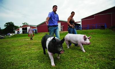 Butler Farms - trại nuôi lợn theo công nghệ giảm ô nhiễm, tăng tính nhân đạo - Ảnh: Jasminegoldband.com