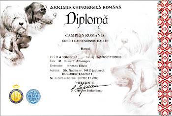 Credit Card Nijinski Ballet RO Ch