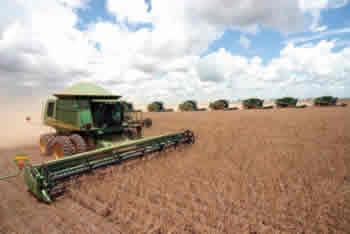 Brasil: PRODUÇÃO AGRÍCOLA DEVE FICAR 6.3 POR CENTO ACIMA DO RECORDE DE 2010