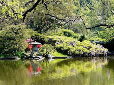 Keindahan Pepohon Merimbun di Taman Bunga