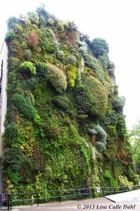 Descubriendo hojas jard n vertical de caixa forum en madrid for Jardin vertical madrid