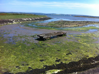Abandoned jetty, Lymington, Hampshire