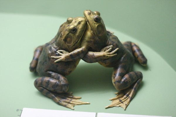To writing 0s best hard practices