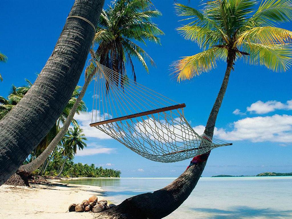 Viajes Y Turismo Actarte
