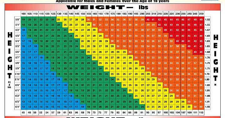 Permalink to Bmi Calculator