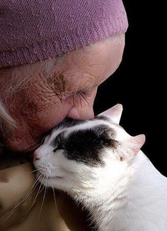 An old Woman and her Cat pictures
