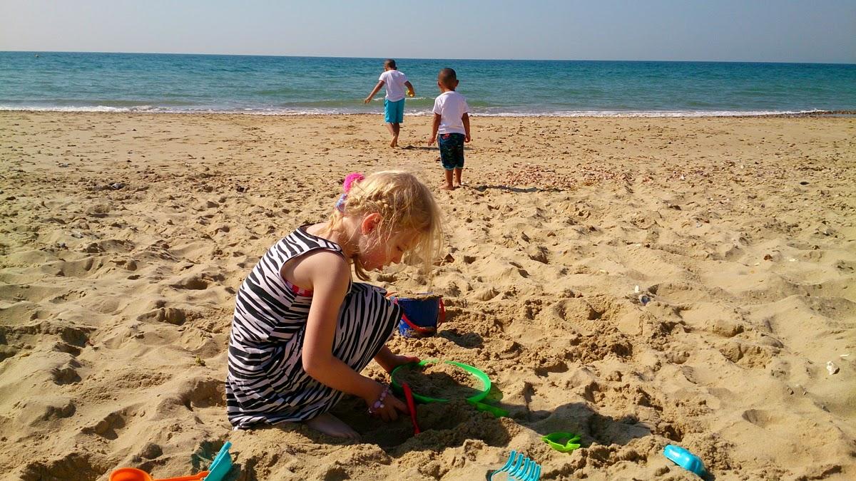 sand explorer