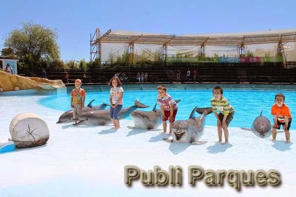 Campamento de verano en Selwo Marina Delfinarium