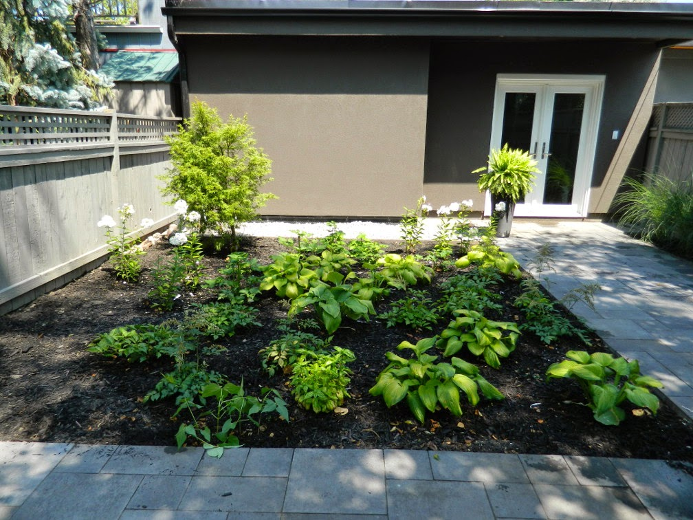 the danforth new garden design after by Paul Jung Gardening Services Toronto