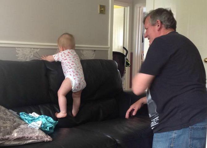 Squidge climbing the back of the sofa