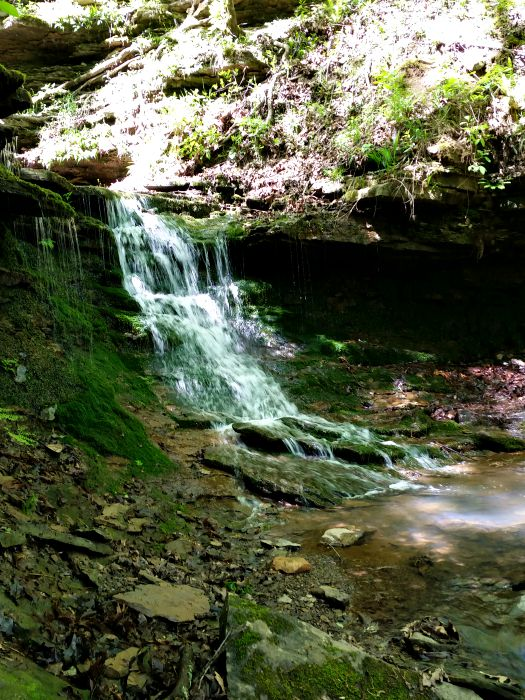 Artist Point Trail and Waterfall in Mountainburg, AR (Spring Hike)