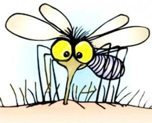 sivrisinek sokması