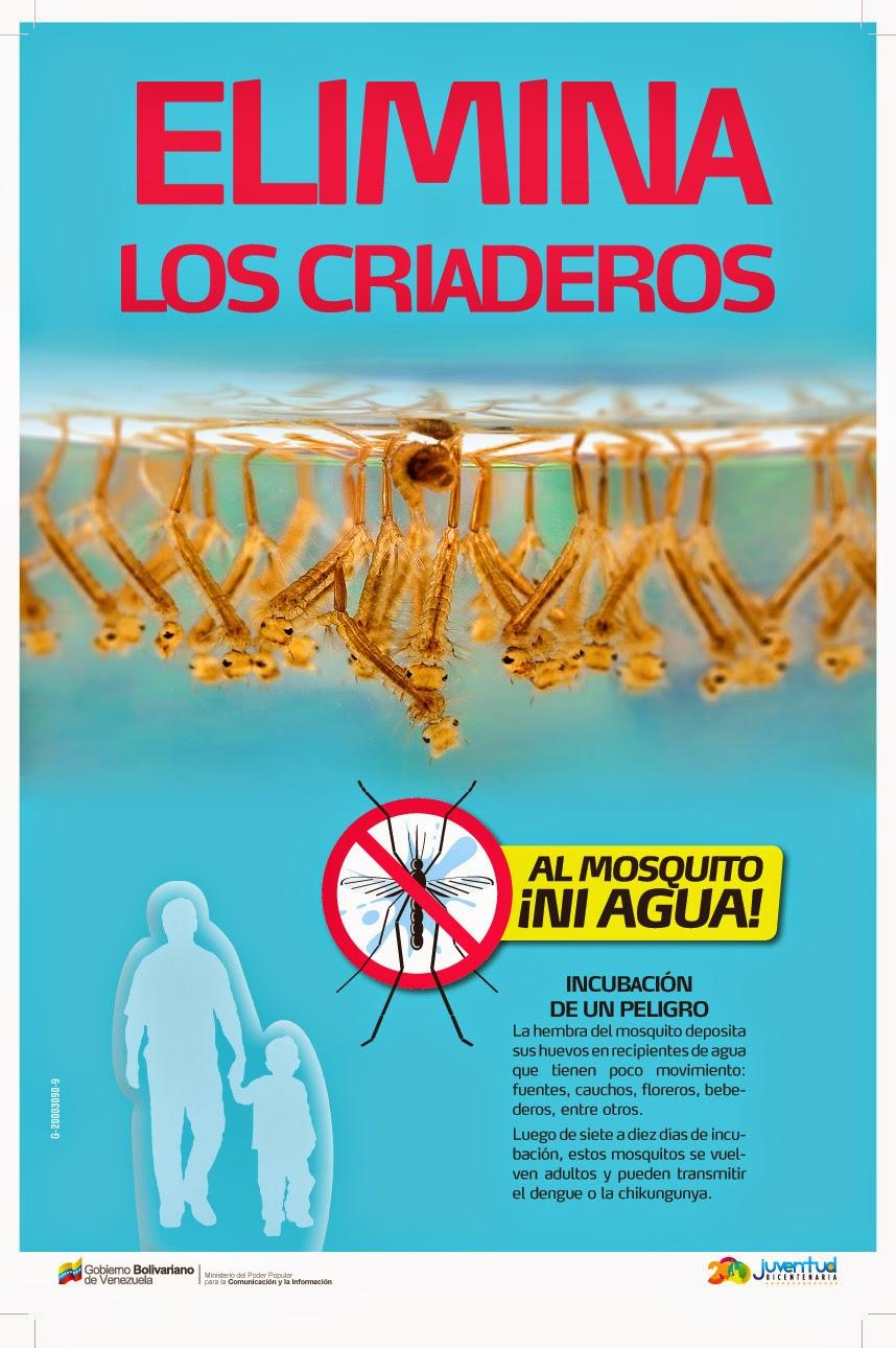 Al Mosquito...ni Agua