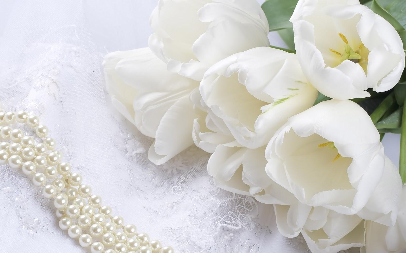 Fotografias Y Fotos Para Imprimir Fotos De Flores Blancas