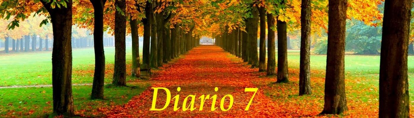 Diario 7