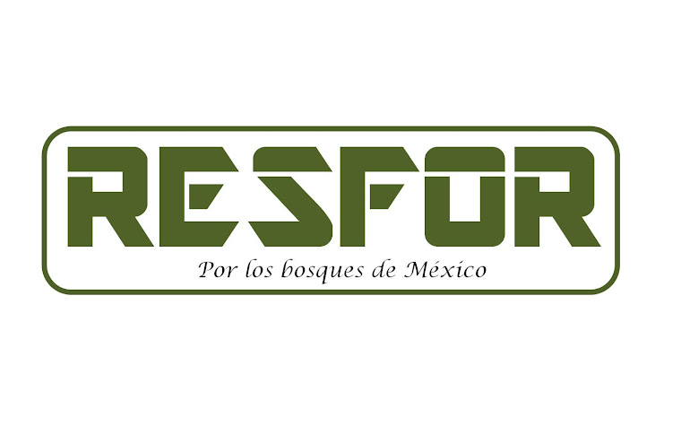 RESTAURACIÓN FORESTAL