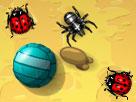 Böcek Oyunları