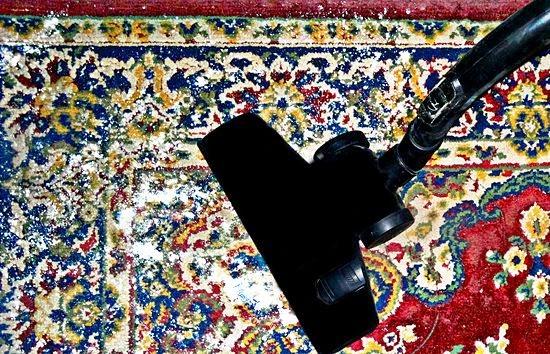 Odore persistente sui tappeti non lavabili in lavatrice ...