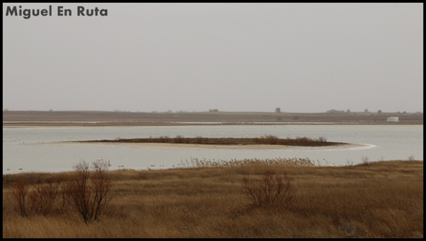 Laguna-de-Manjavacas_5
