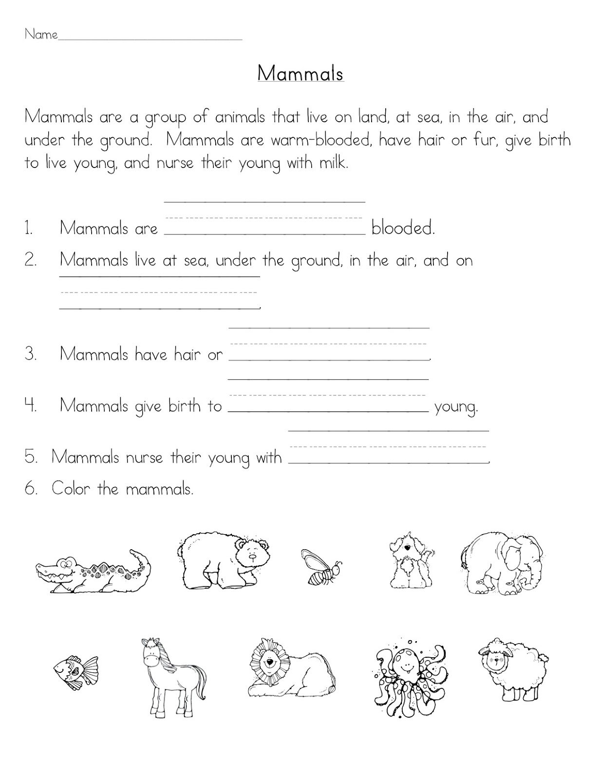 Free Worksheet Mammal Worksheets teaching blog addict mammals we are learning about in science this week with a special focus on bears here is worksheet that used right at the very beginning of unit