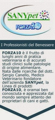 https://www.facebook.com/SanypetForza10
